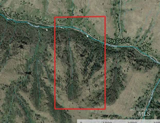 481 Getta Creek Rd., Cottonwood, ID 83522 (MLS #98769061) :: Minegar Gamble Premier Real Estate Services
