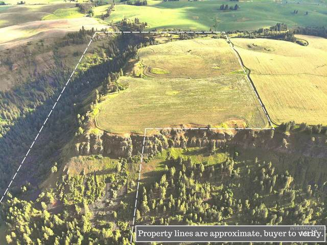 TBD South Rd, Kendrick, ID 83537 (MLS #98769915) :: Boise River Realty