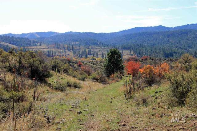 TBD Council Cuprum Rd 98.96 Deeded + 80 Blm, Council, ID 83612 (MLS #98770671) :: Team One Group Real Estate