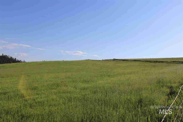 TBD Lot 6 Old Lamb Grade, Stites, ID 83552 (MLS #98771303) :: New View Team