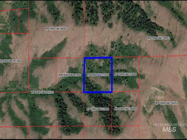 TBd S Exeter 700, Council, ID 83612 (MLS #98771582) :: Build Idaho