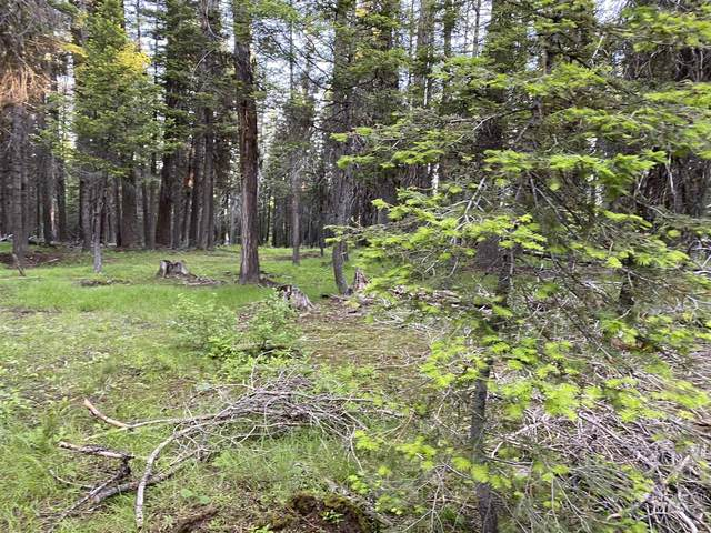 TBD Rapid Creek Rd, Donnelly, ID 83615 (MLS #98772761) :: Bafundi Real Estate