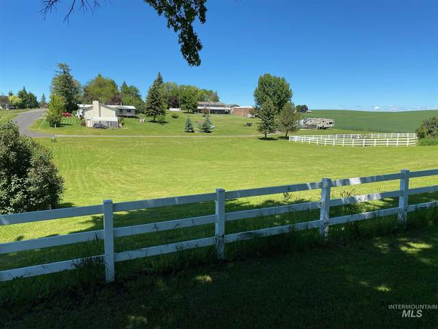 108 4th Ave, Nezperce, ID 83543 (MLS #98773409) :: Michael Ryan Real Estate