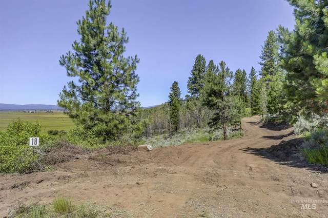 100 Hondo Lane, Donnelly, ID 83615 (MLS #98774267) :: Bafundi Real Estate