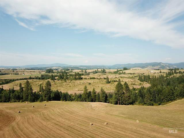 TBD Pleasant Valley Road, Clearwater, ID 83552 (MLS #98775902) :: Beasley Realty