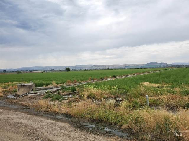 14 Highway 18, Roswell, ID 83660 (MLS #98776360) :: Juniper Realty Group