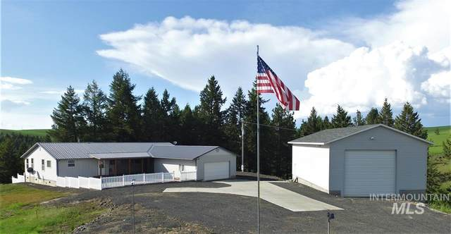 29056 Melrose Road, Peck, ID 83545 (MLS #98776502) :: New View Team