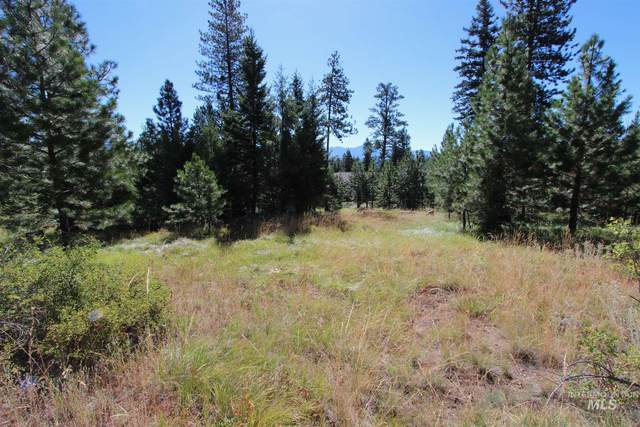 1626 and 1647 Lakeridge Drive, Mccall, ID 83638 (MLS #98776770) :: City of Trees Real Estate