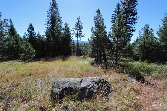 1624 Lakeridge Drive, Mccall, ID 83638 (MLS #98776771) :: Haith Real Estate Team