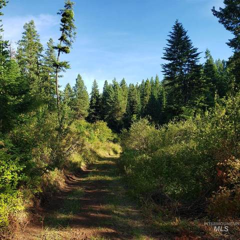 Lot 43 Phase 3 Twin River Ranch, White Bird, ID 83554 (MLS #98776845) :: Beasley Realty