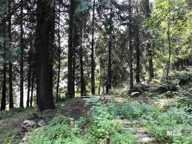 109 Little Smith Lane, Kooskia, ID 83539 (MLS #98776980) :: City of Trees Real Estate
