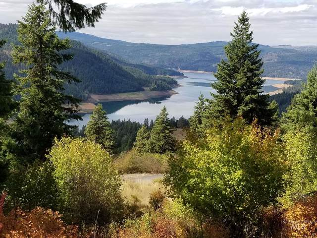 373 Carey Dr, Orofino, ID 83544 (MLS #98777044) :: City of Trees Real Estate