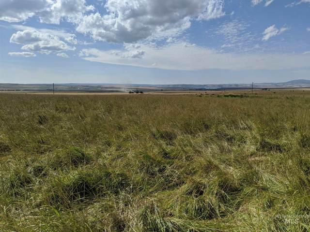 TBD Whitetail Dr., Grangeville, ID 83530 (MLS #98777211) :: Team One Group Real Estate