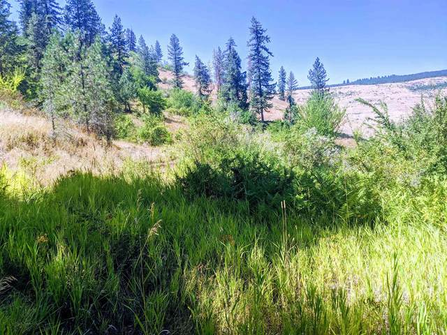Lot 5,6,7 Elk Meadows Subdivision, Kooskia, ID 83539 (MLS #98777484) :: The Bean Team