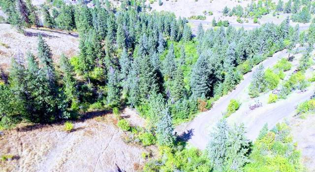 Lot 5 & 6 Elk Meadows Subdivision, Kooskia, ID 83539 (MLS #98777497) :: The Bean Team