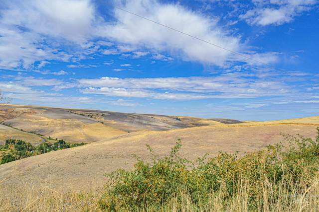 TBD Deacon Ridge, Lapwai, ID 83540 (MLS #98778567) :: Epic Realty