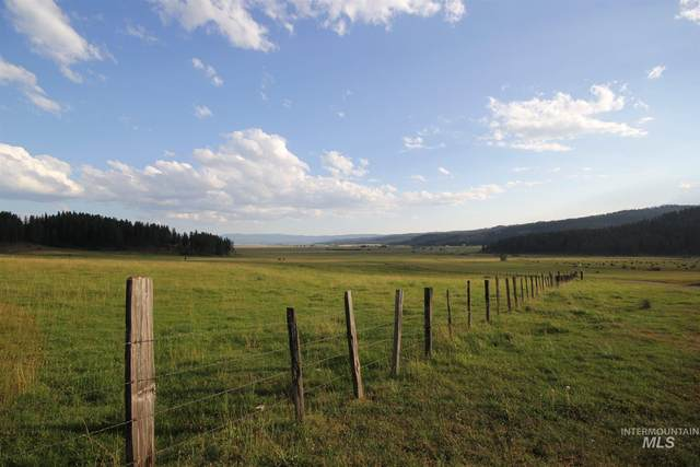 4220 Hwy 95, New Meadows, ID 83654 (MLS #98778970) :: Jeremy Orton Real Estate Group