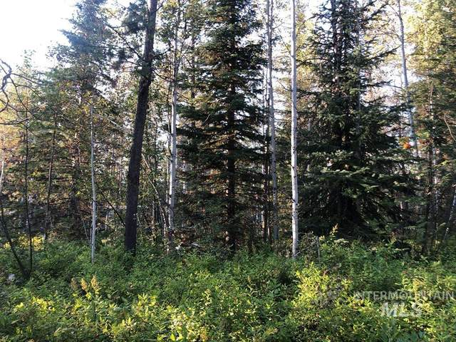 174 Deedee Ln, Donnelly, ID 83615 (MLS #98779332) :: Build Idaho