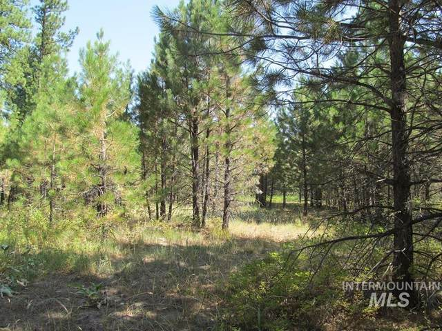 127 Cabarton Rd, Cascade, ID 83611 (MLS #98779533) :: Build Idaho