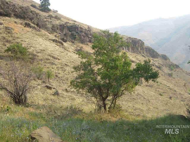Seven Devils Road Road, Riggins, ID 83549 (MLS #98780770) :: Boise River Realty