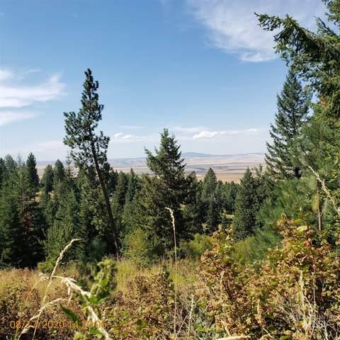 TBD (Lot 15) Cheyenne Drive, Grangeville, ID 83530 (MLS #98780889) :: Boise River Realty