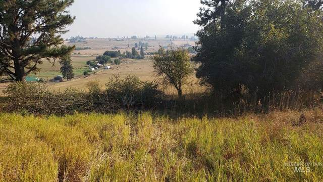 TBD Simlar Rd Parcel 3, Kamiah, ID 83536 (MLS #98780971) :: New View Team