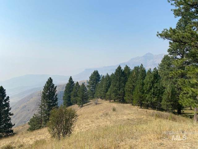 100 ac High Range Rd, Cottonwood, ID 83522 (MLS #98780973) :: New View Team
