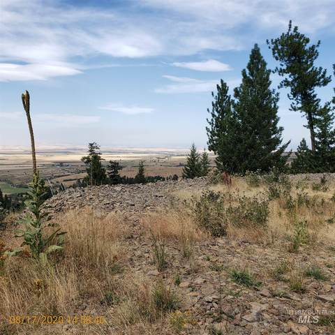 TBD Cheyenne Drive  Lots 13 And 14, Grangeville, ID 83530 (MLS #98781289) :: Boise River Realty