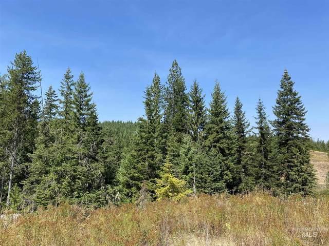 TBD Parcel 2, Fox Meadows, Orofino, ID 83544 (MLS #98781310) :: Jon Gosche Real Estate, LLC
