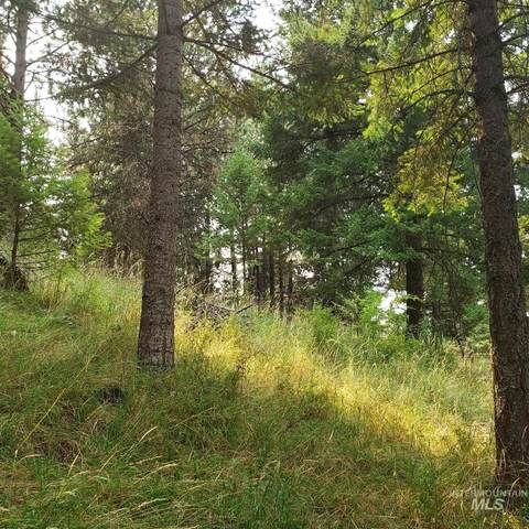 TBD Cheyenne Drive  Lot 18, Grangeville, ID 83530 (MLS #98781682) :: City of Trees Real Estate