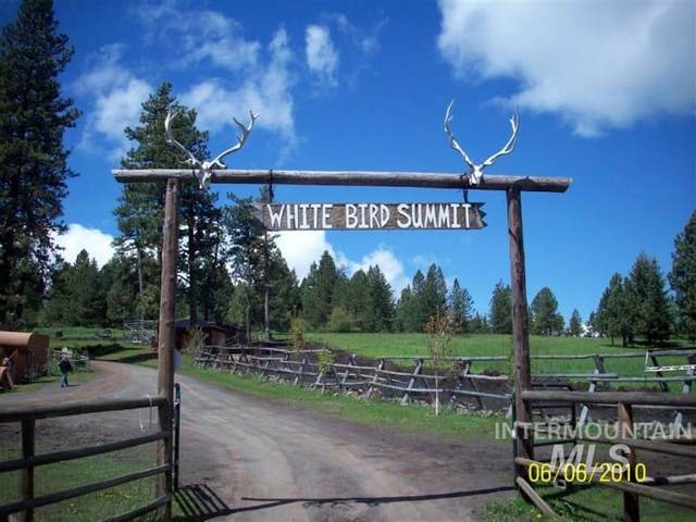 2141 Old White Bird Hill Rd, Grangeville, ID 83530 (MLS #98781972) :: City of Trees Real Estate