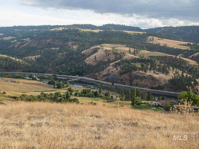 TBD River Road Parcel #3, Lenore, ID 83541 (MLS #98782228) :: Hessing Group Real Estate