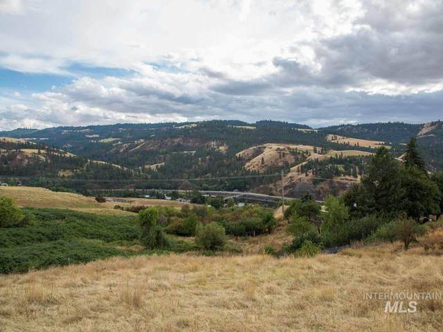 TBD River Road Parcel #4, Lenore, ID 83541 (MLS #98782229) :: Full Sail Real Estate