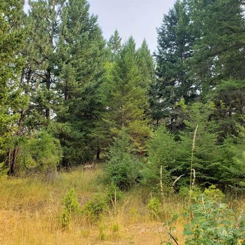 TBD Cheyenne Drive  Lot 19, Grangeville, ID 83530 (MLS #98782341) :: Idaho Real Estate Pros