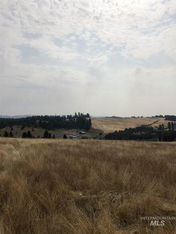 TBD Hwy 3, Deary, ID 83823 (MLS #98782376) :: City of Trees Real Estate