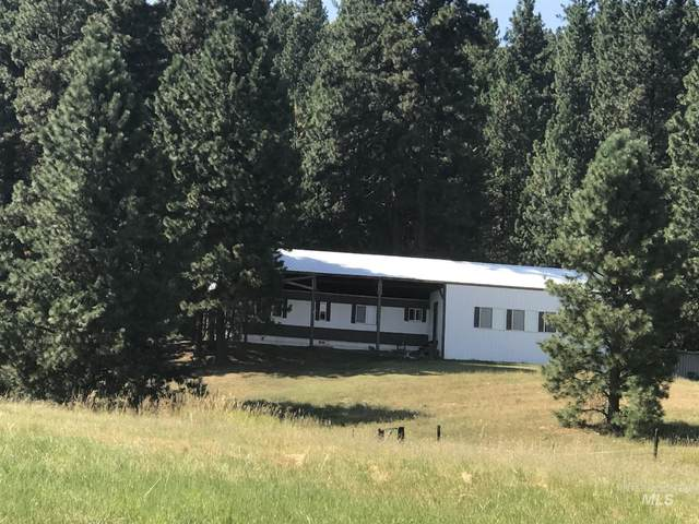 1020 Alsterlund Ln, Viola, ID 83872 (MLS #98782537) :: Jeremy Orton Real Estate Group
