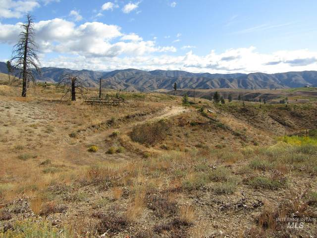 NNA Lester Creek Road, Pine, ID 83647 (MLS #98782585) :: Jeremy Orton Real Estate Group