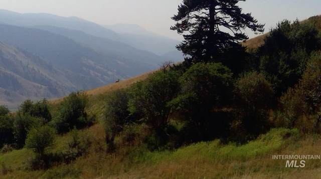 Lot 98 Elk Haven Circle, Pollock, ID 83547 (MLS #98783233) :: Shannon Metcalf Realty