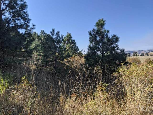 TBD Brotov Rd., Clearwater, ID 83552 (MLS #98783671) :: Hessing Group Real Estate