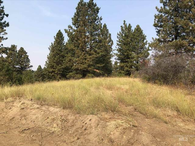 TBD Lot 20 Outlaw Trail, Banks, ID 83602 (MLS #98783748) :: New View Team