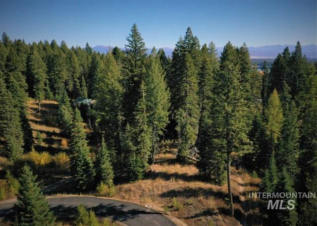 26 Steelhead Court, Donnelly, ID 83615 (MLS #98783783) :: Idaho Real Estate Pros