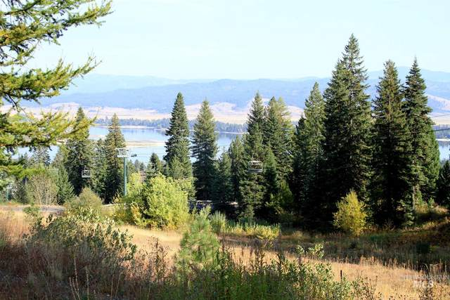 687 Whitewater Drive, Donnelly, ID 83615 (MLS #98783857) :: Bafundi Real Estate