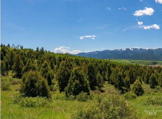 TBD Buckthorn Ln, Irwin, ID 83428 (MLS #98783968) :: Silvercreek Realty Group