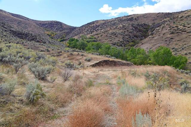 TBD Shoemaker, Horseshoe Bend, ID 83629 (MLS #98784015) :: City of Trees Real Estate