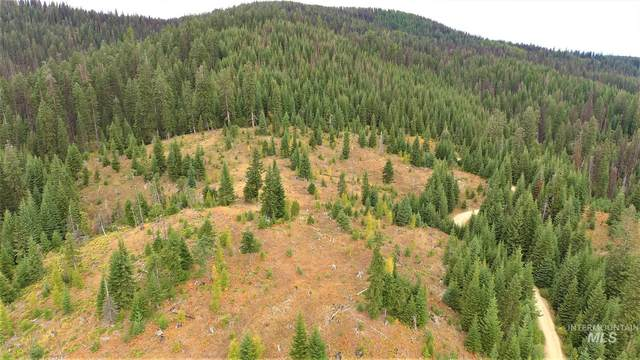 TBD Elk Summit Properties Parcel 1, Elk City, ID 83525 (MLS #98784591) :: Navigate Real Estate
