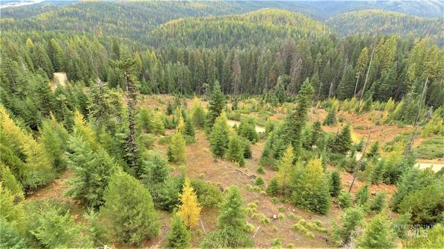 TBD Elk Summit Properties Parcel 6, Elk City, ID 83525 (MLS #98784599) :: Full Sail Real Estate