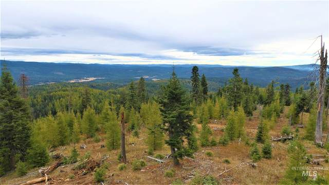 TBD Elk Summit Properties Parcel 7, Elk City, ID 83525 (MLS #98784601) :: Full Sail Real Estate