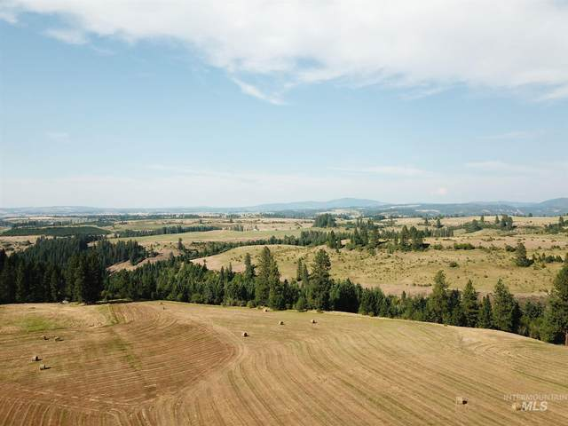 TBD Pleasant Valley Road, Clearwater, ID 83552 (MLS #98784716) :: Epic Realty