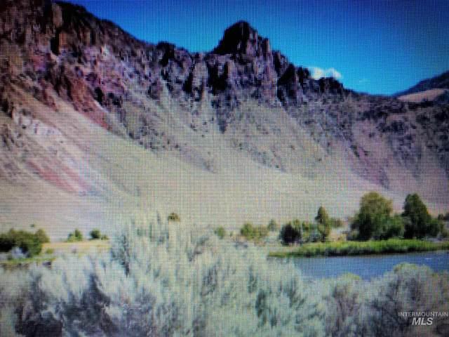 24070 Hwy 75, Challis, ID 83226 (MLS #98785618) :: Boise River Realty