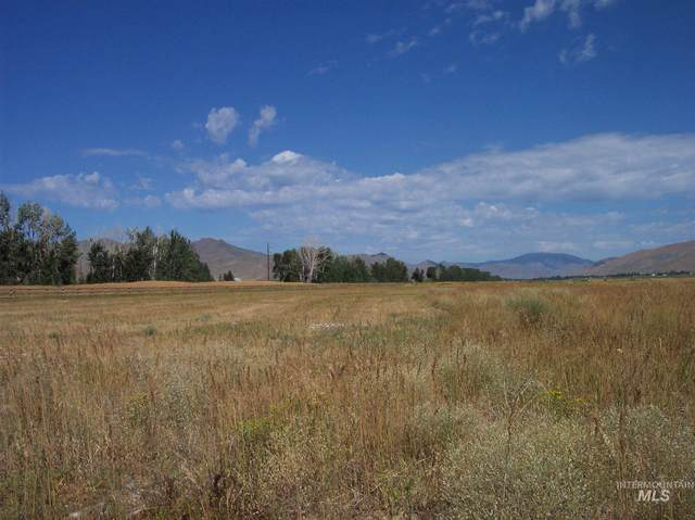 10 Wyatt, Bellevue, ID 83313 (MLS #98785868) :: Navigate Real Estate